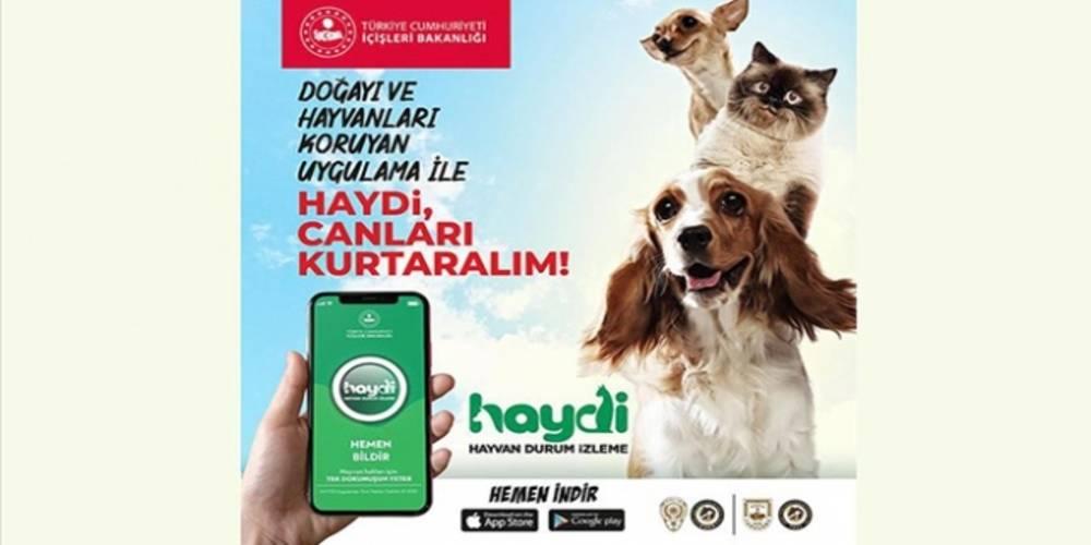 Doğa ve hayvanlara karşı işlenen suçların önüne geçmek amacıyla hayata geçirilen '#HAYDİ' mobil ihbar uygulaması, yoğun ilgi gördü