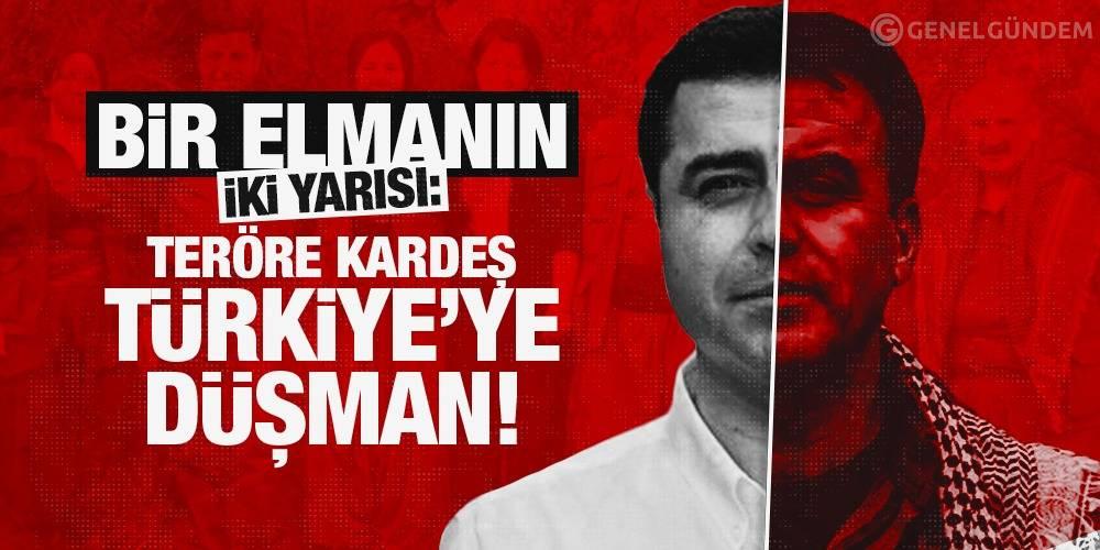 Bir Elmanın İki Yarısı: Teröre Kardeş, Türkiye'ye Düşman
