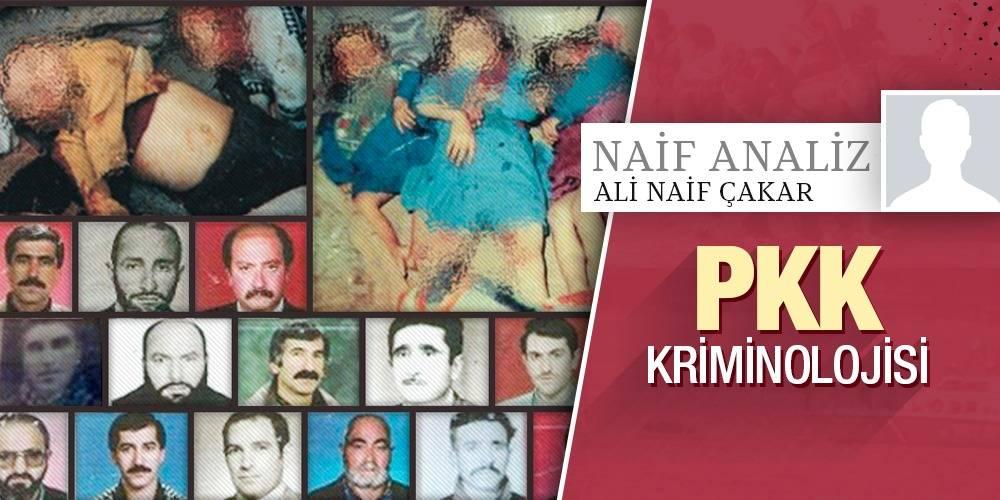 Naif Analiz - Ali Naif Çakar | PKK Kriminolojisi