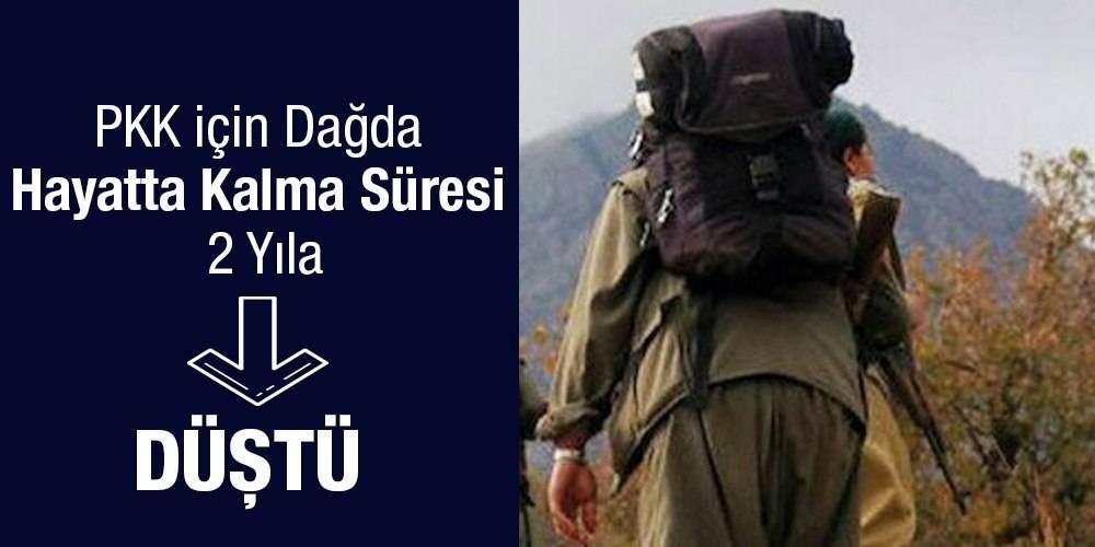 PKK için dağda hayatta kalma süresi ortalama 2 yıla düştü
